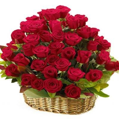 Tulip Florist