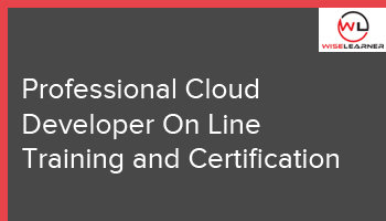 Professional Cloud Developer On Line  Training and Certification
