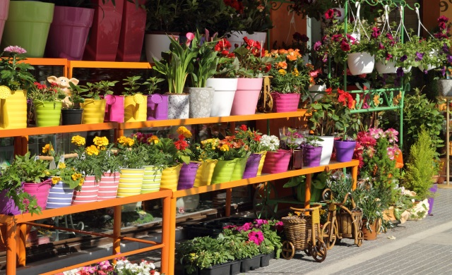 Hitech Florists